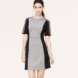 LOFT gray black colorblock shift work dress 00P